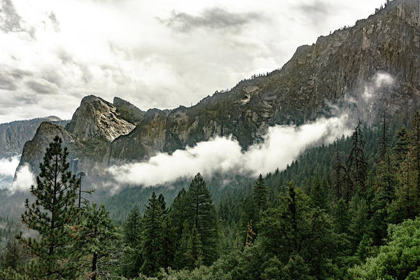 Photograph - Yosemite Valley 8 by Silvia Marcoschamer
