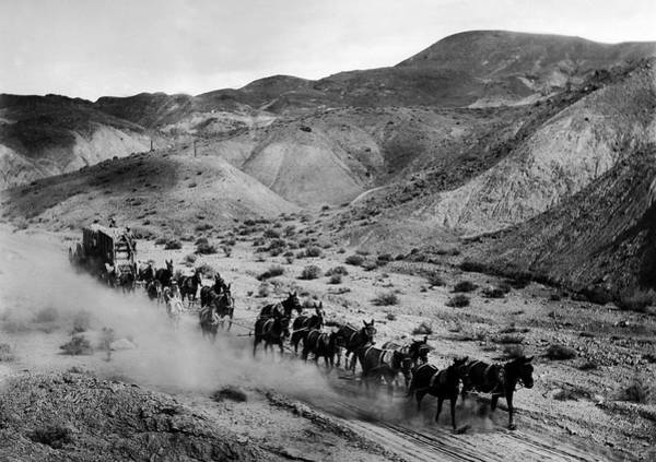 Photograph - 20-mule Team Hauling Borax Out Of Death Valley To The Railroad,  by Doc Braham