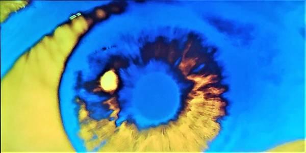 Photograph - 2001 Eyeball Blue Yellow by Rob Hans