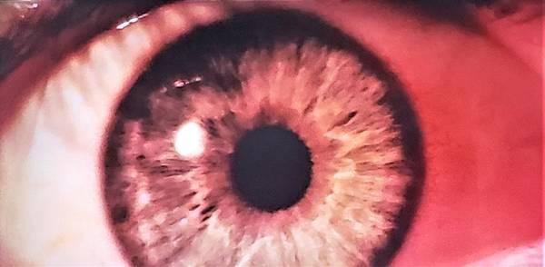 Photograph - 2001 Eyeball by Rob Hans