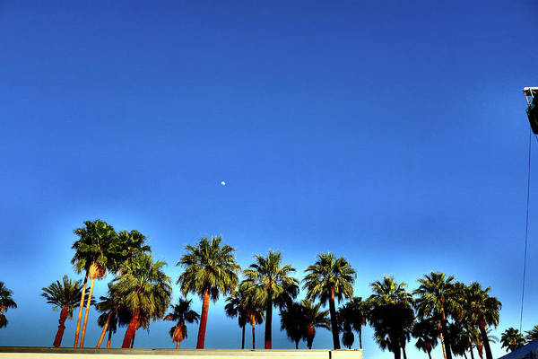 Indio Photograph - 2014 Coachella Valley Music And Arts by Frazer Harrison