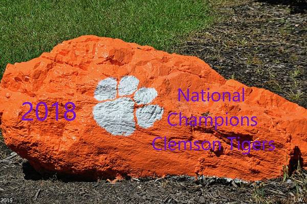 Photograph - 2018 National Champions Clemson Tigers by Lisa Wooten