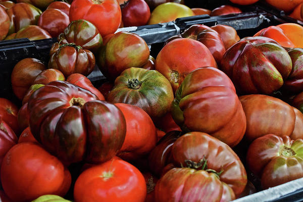 Photograph - 2019 Farmers' Market Spring Green Heirloom Tomatoes 1 by Janis Nussbaum Senungetuk