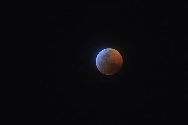 Photograph - 2019 Lunar Eclipse by Chance Kafka