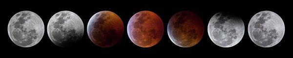 Photograph - 2019 Lunar Eclipse Progression by Dennis Sprinkle