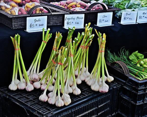 Photograph - 2019 Monona Farmers' Market July Vegetables by Janis Nussbaum Senungetuk