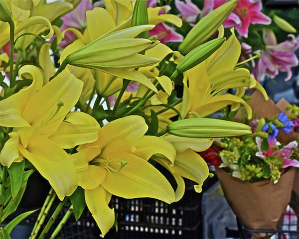 Photograph - 2019 Monona Farmers' Market July Yellow Lilies by Janis Nussbaum Senungetuk