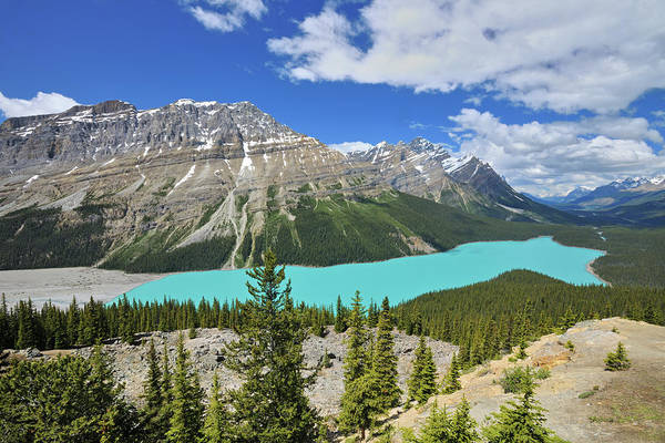 Peyto Lake Wall Art - Photograph - Canada, Alberta, Banff National Park by Jaynes Gallery