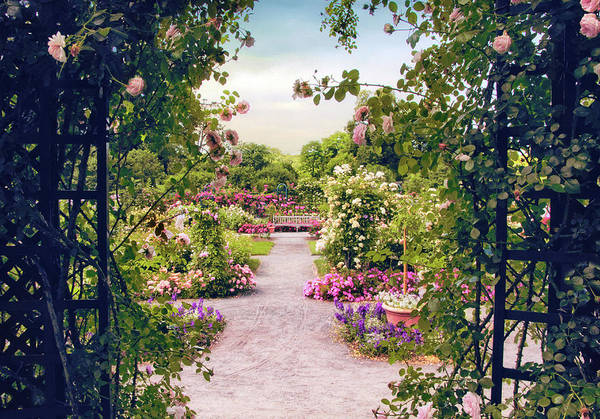 Wall Art - Photograph - Pergola Path by Jessica Jenney