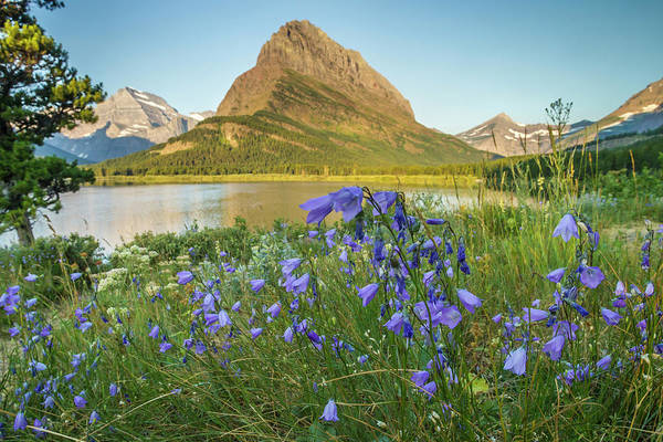 Wall Art - Photograph - Usa, Montana, Glacier National Park by Jaynes Gallery
