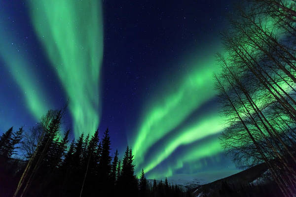 Wall Art - Photograph - Aurora Borealis, Northern Lights by Stuart Westmorland