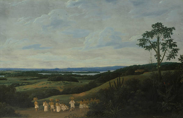 Wall Art - Painting - A Brazilian Landscape by Frans Post