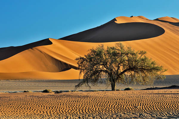 Wall Art - Photograph - Africa, Namibia, Sossusvlei Dunes by Hollice Looney