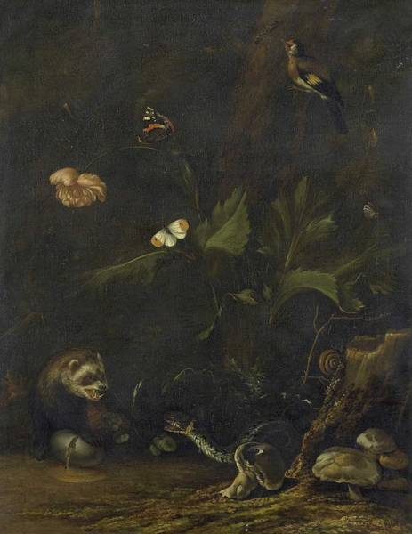 Wall Art - Painting - Animals And Plants, Anthonie Van Borssom, 1650 - 1677 by Anthonie van Borssom