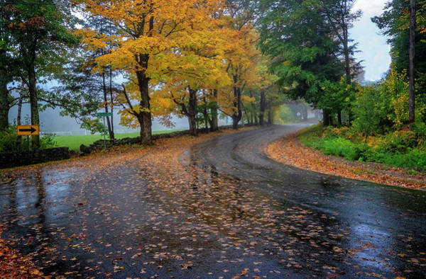 Photograph - Autumn Road by Tom Singleton