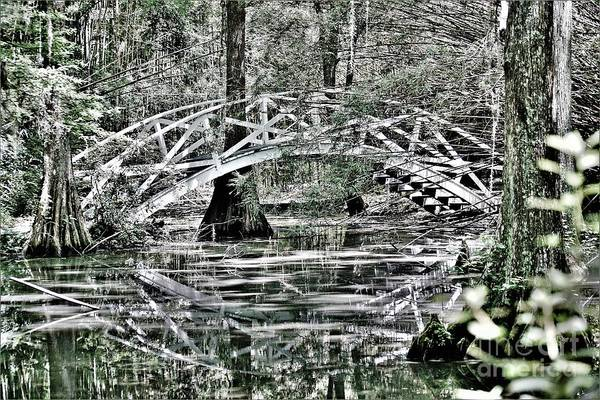 Photograph - Bridging Over by Merle Grenz