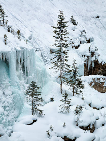 Wall Art - Photograph - Canada, Alberta, Banff National Park by Ann Collins