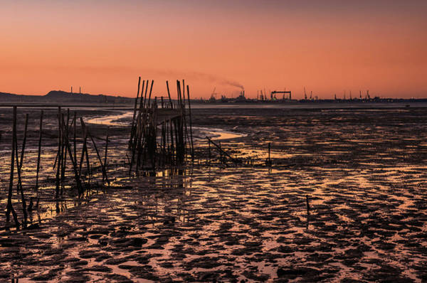 Wall Art - Photograph - Carrasqueira Scenic by Carlos Caetano
