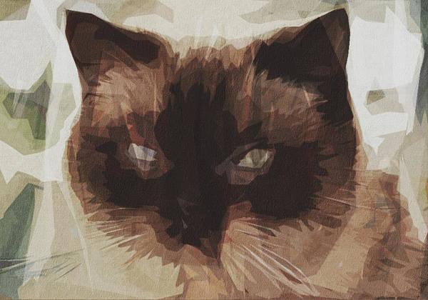 Wall Art - Digital Art - Cat Mieze British Shorthair Dear by Draw Sly