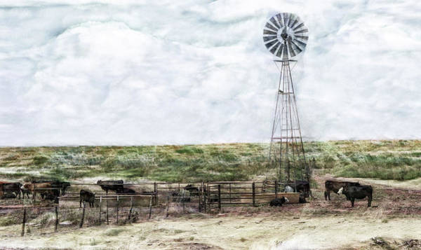 Digital Art - Classic Cattle II by Don Northup