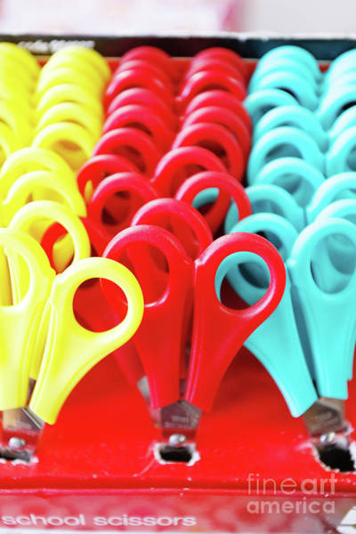 Wall Art - Photograph - Colorful Scissors by Tom Gowanlock