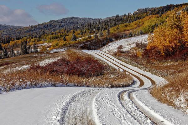 Wall Art - Photograph - Cypress Hills First Snowfall by Mark Duffy