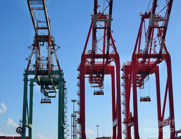 Photograph - Detail View Of Container Loading Cranes by Yali Shi
