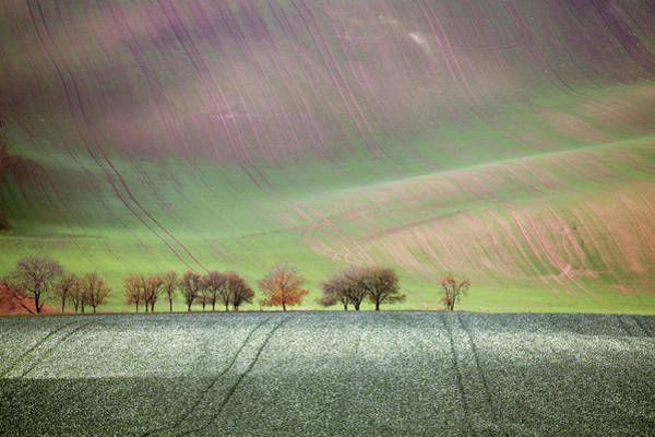 Art Print featuring the photograph Autumn In South Moravia 3 by Dubi Roman