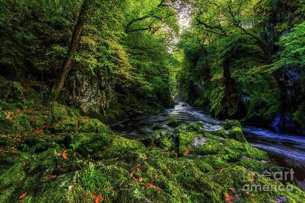Photograph - Fairy Glen by Ian Mitchell