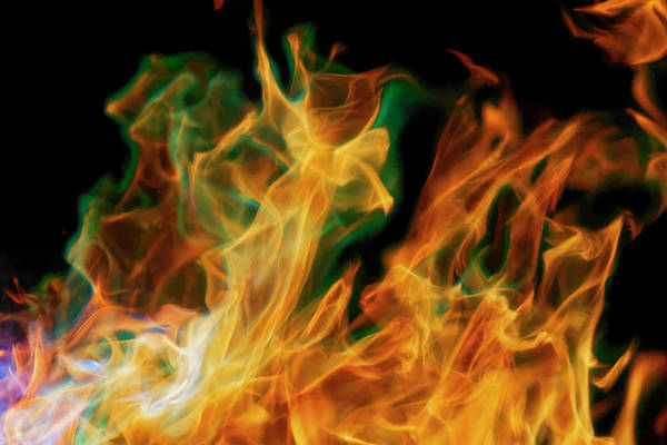 Wall Art - Photograph - Flame Detail From Campfire, Kentucky by Adam Jones