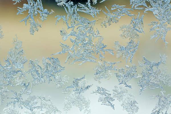 Wall Art - Photograph - Frost Pattern On Window by Adam Jones