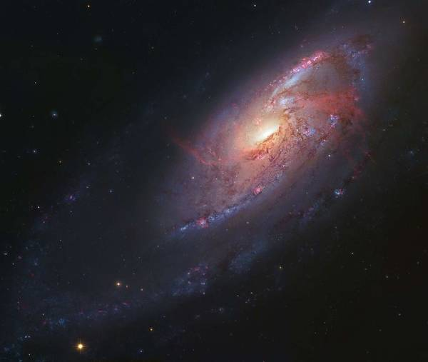 Wall Art - Painting - Galaxy M106 by Celestial Images