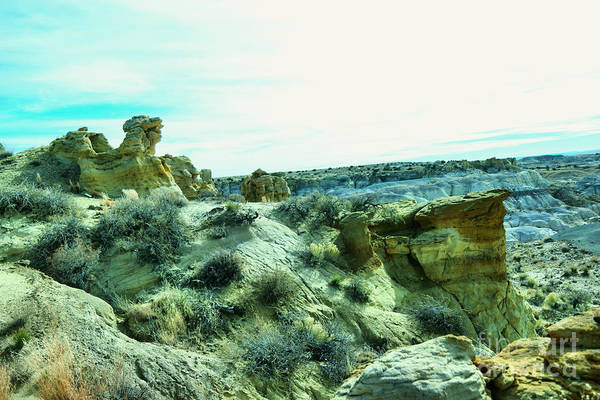 Land Of Enchantment Photograph - High Desert Landscape by Jeff Swan