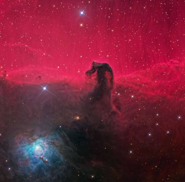 Wall Art - Painting - Horsehead Nebula by Celestial Images