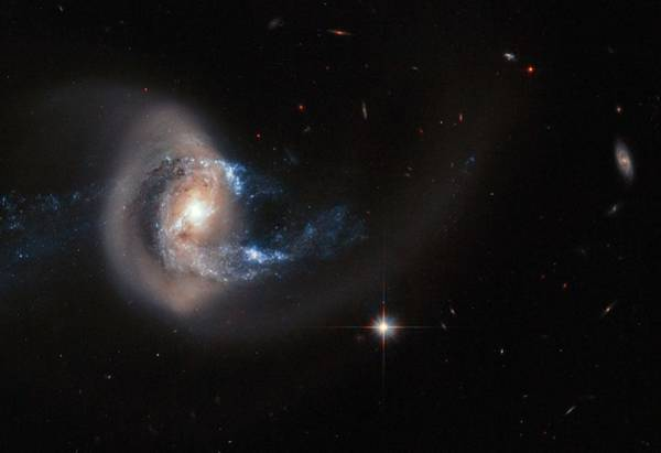 Wall Art - Painting - Hubble Image Of Ngc 7714 by Celestial Images