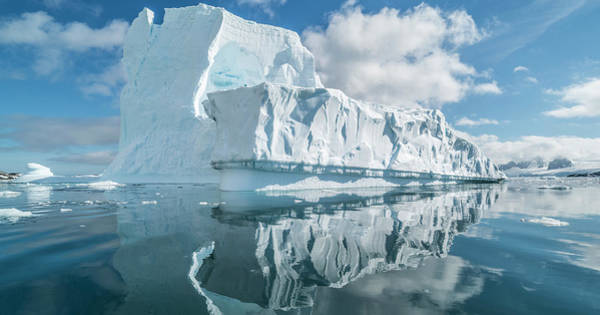 Wall Art - Photograph - Icebergs Floating In The Southern by Panoramic Images