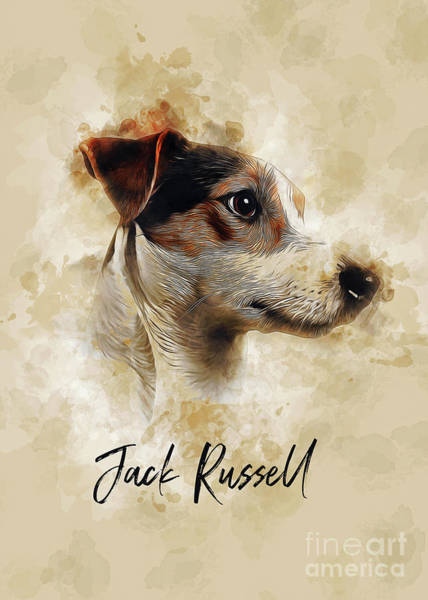 Digital Art - Jack Russell by Ian Mitchell