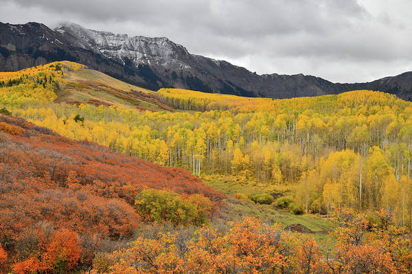 Photograph - Last Dollar Road Fall Colors by Ray Mathis