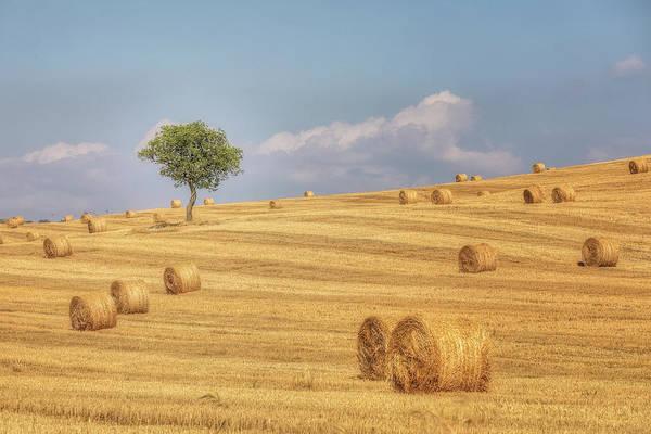 Felder Wall Art - Photograph - Pienza, Tuscany - Italy by Joana Kruse