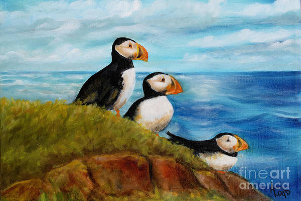 Wall Art - Painting - 3 Puffins by Ann Loyd