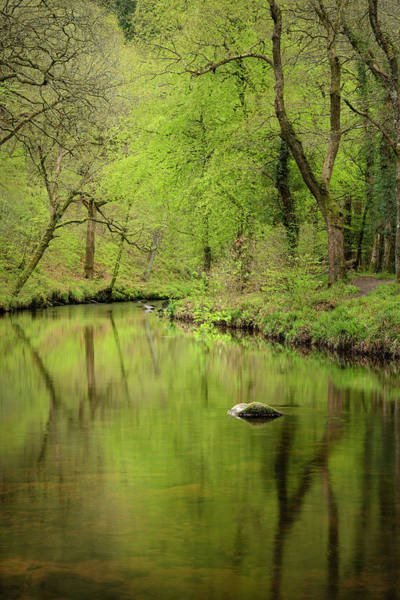 Wall Art - Photograph - Stunning Peaceful Spring Landscape Image Of River Teign Flowing  by Matthew Gibson