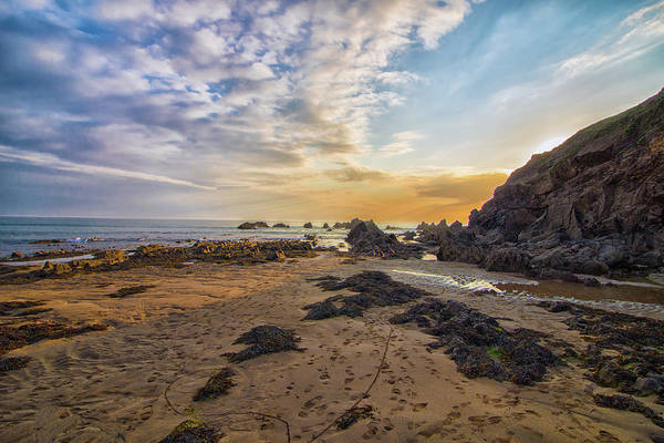 Wall Art - Photograph - Sunset Beach by Martin Newman