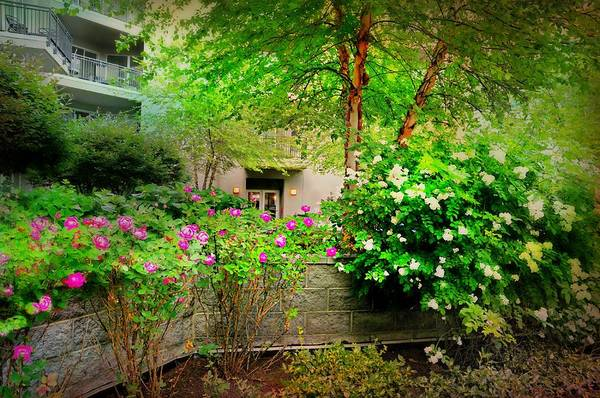 Wall Art - Photograph - The Courtyard by Diana Angstadt