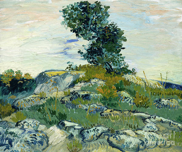 Wall Art - Painting - The Rocks, 1888 by Vincent Van Gogh