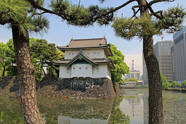 Photograph - Tokyo, Japan - Imperial Palace by Richard Krebs