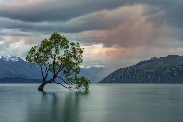 Te Waipounamu Wall Art - Photograph - Wanaka - New Zealand by Joana Kruse