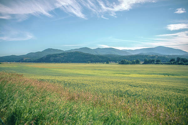 Photograph - Wide Open Vast Montana Landscape In Summer by Alex Grichenko
