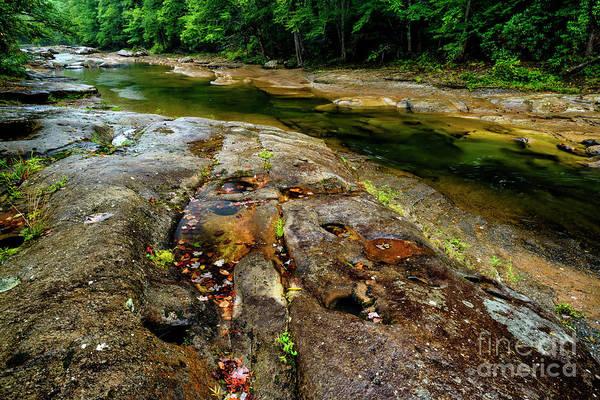 Photograph - Williams River Rain by Thomas R Fletcher