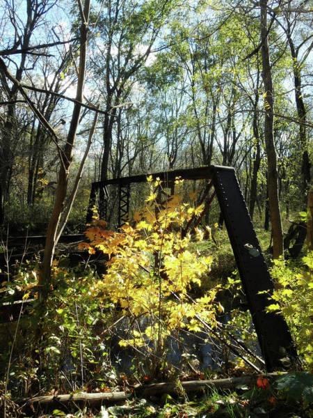 Photograph - Ye Old Tracks by Cyryn Fyrcyd