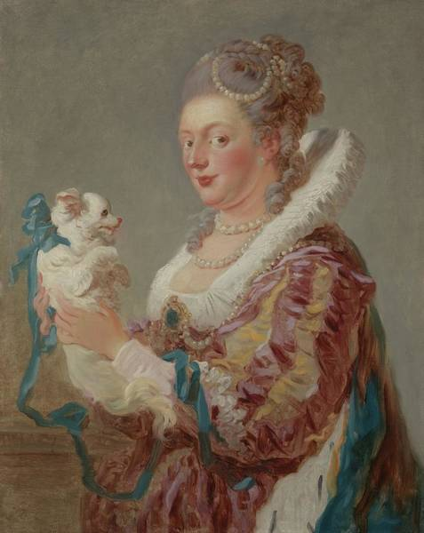 Wall Art - Painting - A Woman With A Dog by Jean-Honore Fragonard